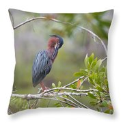 Preening Greenie Throw Pillow