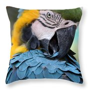 Preening Macaw Throw Pillow