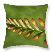 Prehistoric Flower Throw Pillow