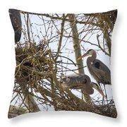 Preparing The Nest Throw Pillow