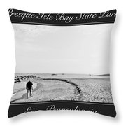Presque Isle State Park Erie Pennsylvania Throw Pillow
