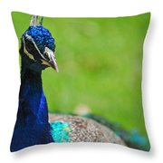Pretty As A Peacock Throw Pillow by Lori Tambakis