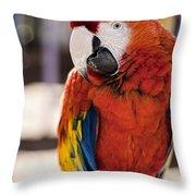 Pretty Bird 2 Throw Pillow