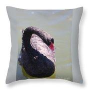 Pretty Black Swan 2 Throw Pillow