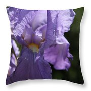 Pretty Blue Bearded Iris Throw Pillow
