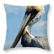 Pretty Blue Eyes Throw Pillow