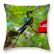 Pretty Blue-tailed Hummer In Mindo Throw Pillow