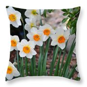 Pretty Daffodil Garden Throw Pillow