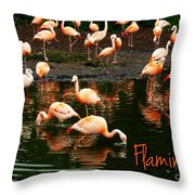 Pretty Flamingos Throw Pillow