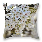 Pretty Flowering Trees Throw Pillow