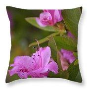 Pretty Fuschia Rhododendron Throw Pillow