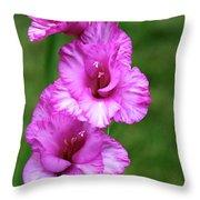 Pretty Gladiolus Throw Pillow