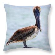 Pretty Gulf Pelican Throw Pillow