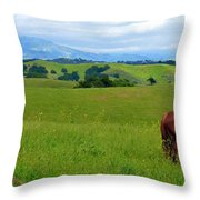 Pretty Horse Grazing In Rolling Hills Throw Pillow