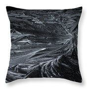 Pretty Icy Throw Pillow