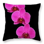 Pretty In Hot Pink Throw Pillow