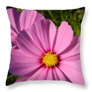 Pretty In Pink Cosmos Throw Pillow