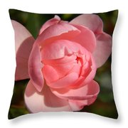 Pretty In Pink Rose Bud Throw Pillow