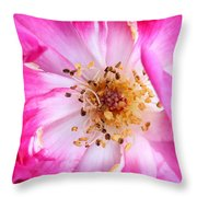 Pretty In Pink Rose Close Up Throw Pillow