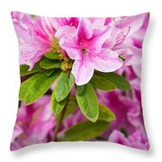 Pretty In Pink - Spring Flowers In Bloom. Throw Pillow