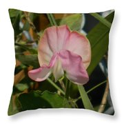 Pretty In Pink Sweet Pea Throw Pillow