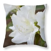 Pretty In White Azalea  Throw Pillow