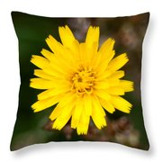 Pretty In Yellow Throw Pillow