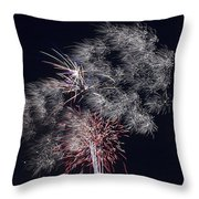 Pretty Light Throw Pillow