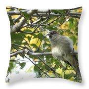 Pretty Little Bird Throw Pillow