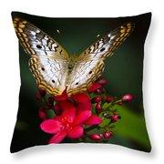 Pretty Little Butterfly  Throw Pillow