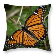 Pretty Monarch Throw Pillow