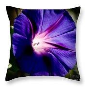 Pretty Morning Glory Throw Pillow