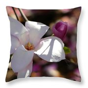 Pretty Pale Pink Magnolia Throw Pillow