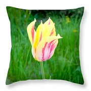 Pretty Pastel Tulip Throw Pillow