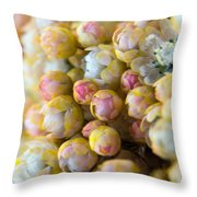 Pretty Pastels Throw Pillow