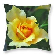 Pretty Petals Throw Pillow
