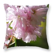 Pretty Pink Cherry Blossoms Throw Pillow