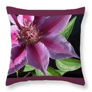 Pretty Pink Clematis Throw Pillow