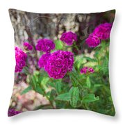 Pretty Pink Petals Throw Pillow