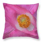Pretty Pink Poppy Macro Square Throw Pillow