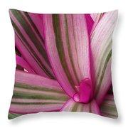 Pretty Plant Leaves 2 Throw Pillow
