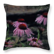 Pretty Purple Ladies Throw Pillow