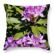Pretty Purple Rhododendron Throw Pillow