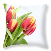Pretty Red And Yellow Tulips On White Background Throw Pillow