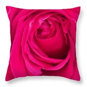 Pretty Red Rose  Throw Pillow