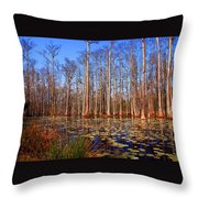 Pretty Swamp Scene Throw Pillow by Susanne Van Hulst