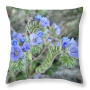Pretty To Look At Throw Pillow