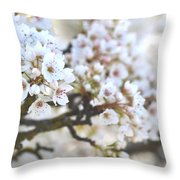 Pretty White Flowering Tree In Spring Throw Pillow