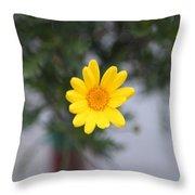 Pretty Yellow Flower Throw Pillow