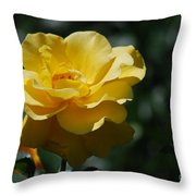 Pretty Yellow Rose Blossom Throw Pillow